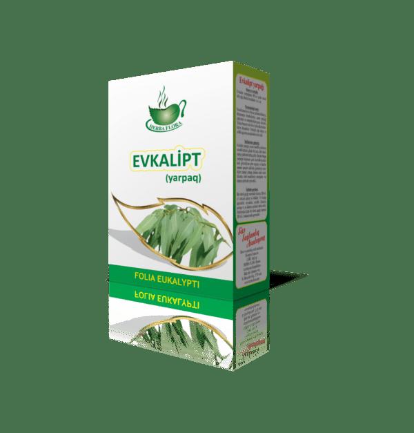 Evkalipt-эвкалипт-Eucalyptus