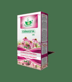Exinaseya - Эхинацея - Echinacea