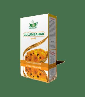 Gülümbahar (dərman)-Kалендула (лекарственная)-Calendula