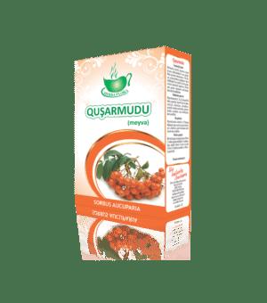 Quşarmudu, üvəz-Рябина